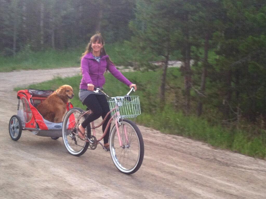 Jori Renner, owner of Gore Range Sports pulls her golden retriever in a bike trailer while riding her cruiser.